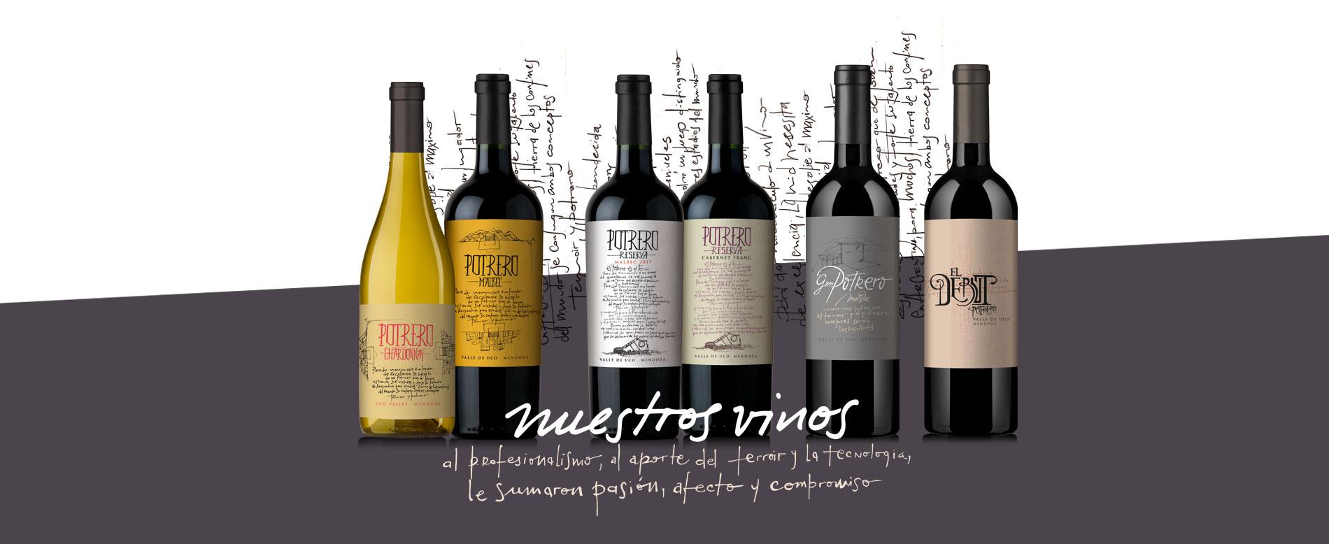 linea completa de vinos de potrero